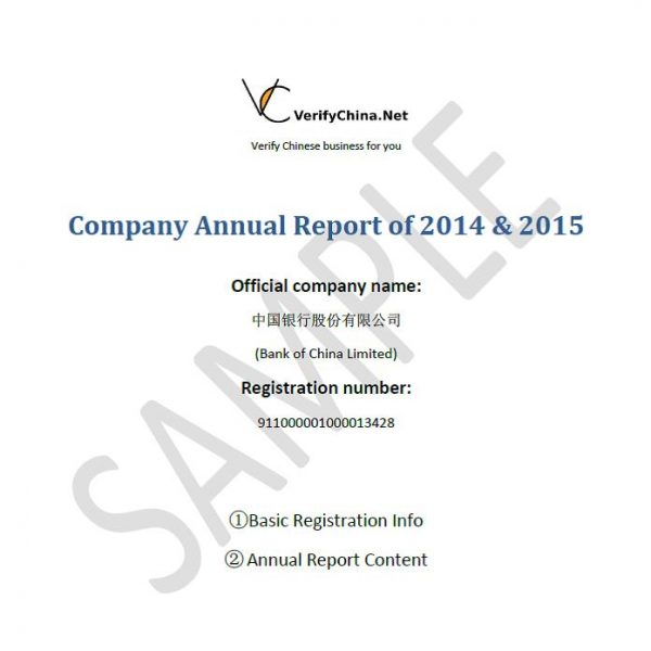 VerifyChinaNet – Company Annual Report Sample