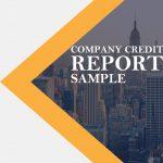 VerifyChina verification service-sample report cover-Verify China Suppliers